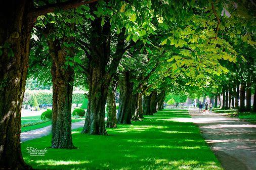 Na Poděbradské kolonádě ... / The Colonnade Poděbrady CZ ... #eldoradothemeart…