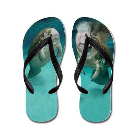 Mother and Baby manatee flip flops.  Great fashion for summer.  Manatee Images by Gregory Sweeney on great products printed by Cafe Press.