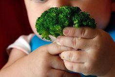 Diretrizes BLW: O Método de Introdução Alimentar Sem Papinhas