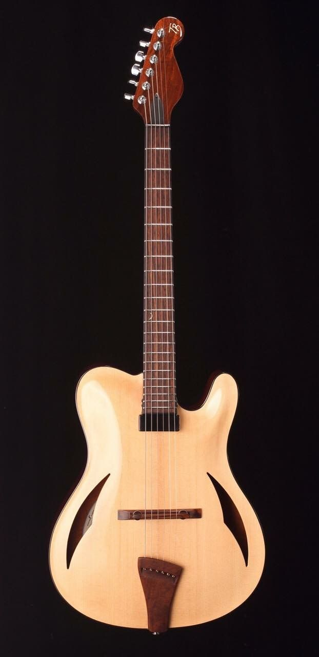 Pin By Christophe Mathieu On Instrument Guitar Bass Archtop Guitar Acoustic Electric Guitar Cool Guitar