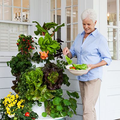 1000+ ideas about Tower Garden on Pinterest | Planting ...