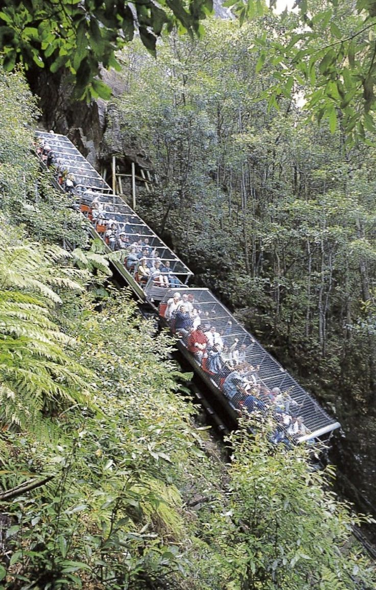 Katoomba Scenic Railway, Blue Mtns. Doesn't look like much? Wrong! The steep descent is a surprise and rather a heart stopper for the unsuspecting. Breathtaking view tho'.