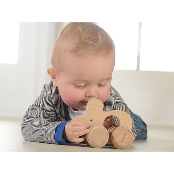 Push Along Mouse - This eco-friendly toy is made of sustainable European beech. A perfect toy for baby who starts to grasp, hold and push objects. An ideal green toy made of natural European beech and free of paint and glue.