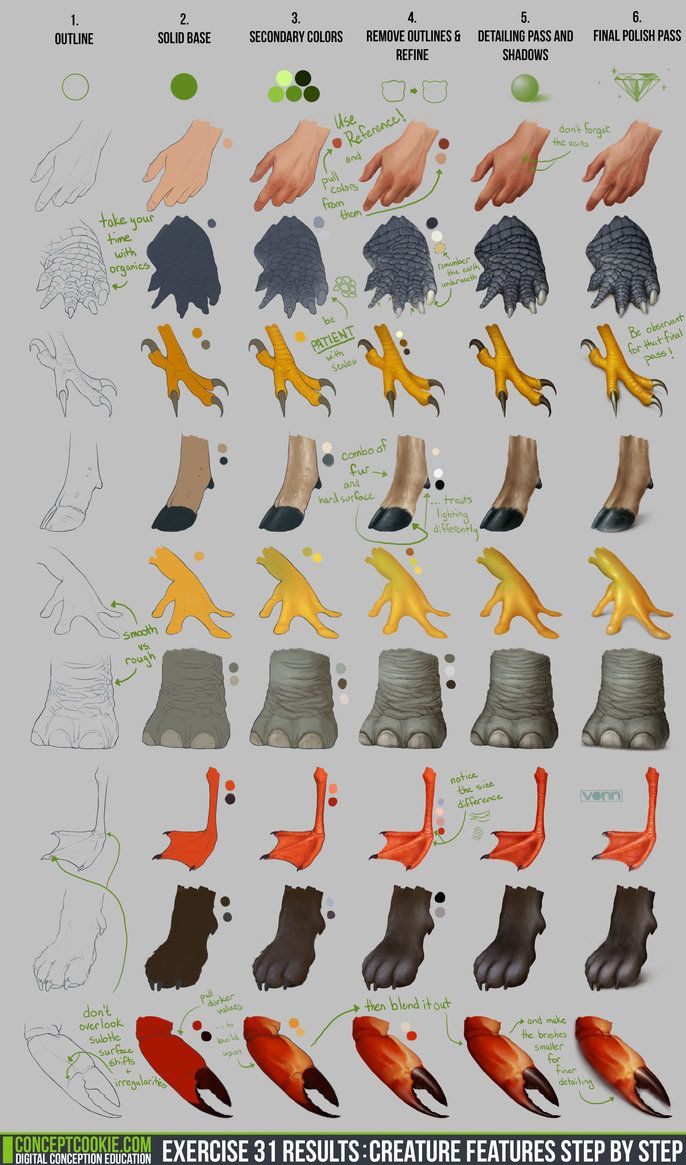 Exercise 31 Results: Creature Feature Step by Step by ConceptCookie on DeviantArt