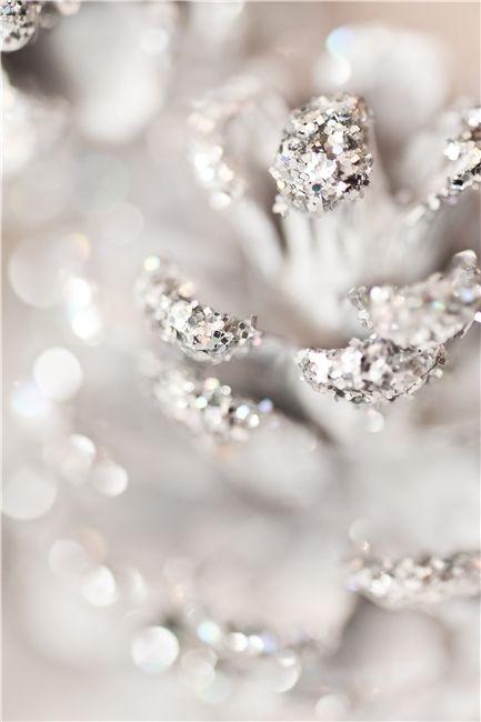 ~ glittery ~