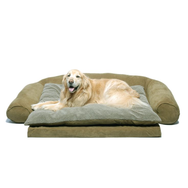 17 best images about dog beds that look like couch on for Couch polster