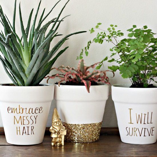 DIY gold message planters