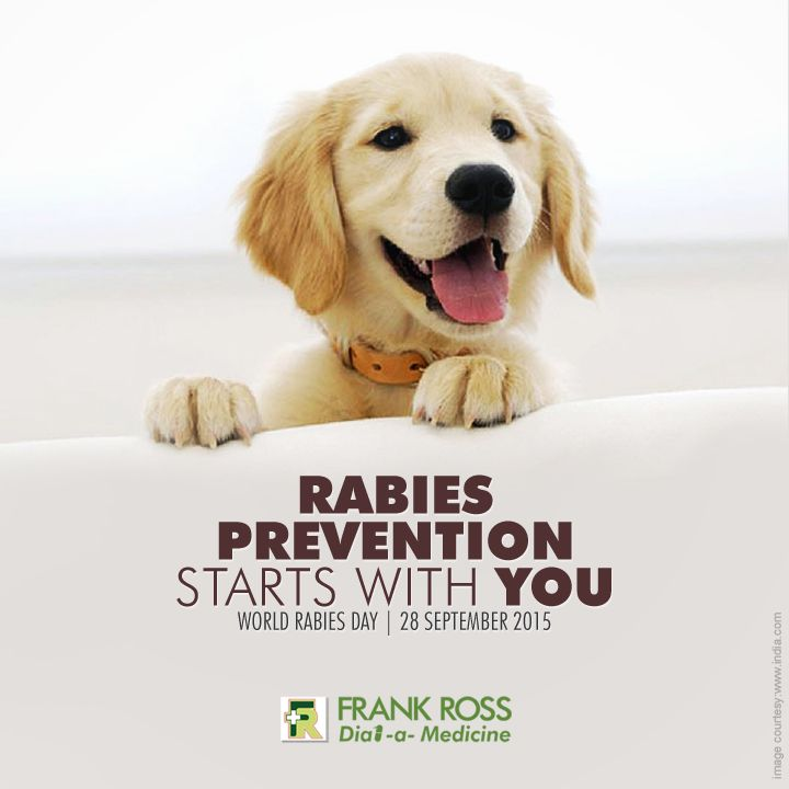 Vaccinate your pets today. Stay safe from #Rabies . #WorldRabiesDay . 28th September.