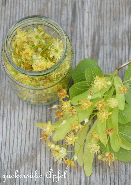 Lindenblüten für Erkältungstee