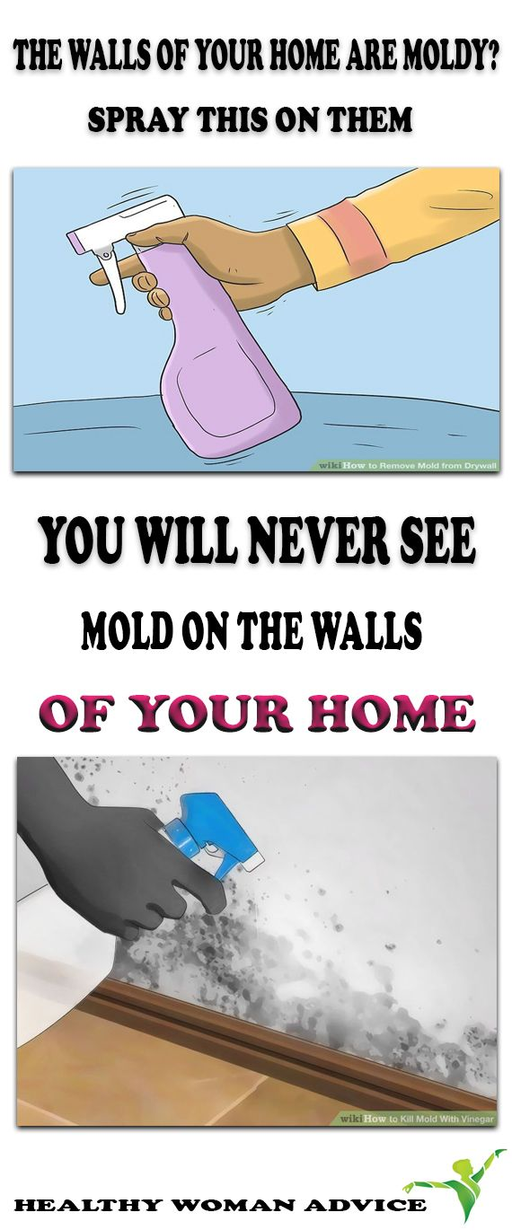 If the walls in your home are moldy and you have no clue how to destroy the mold, we have just the thing you need. We're going to show you how to prepare a simple natural mixture that will remove the mold from your walls and prevent it from coming back again.