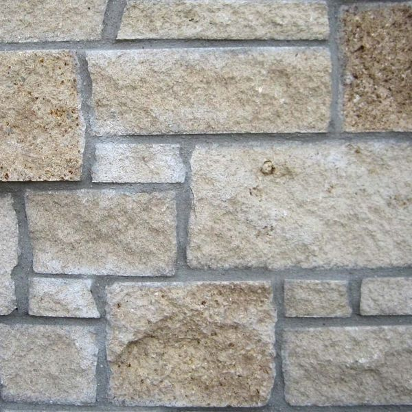 Prairie Shell Thin Stone Veneer