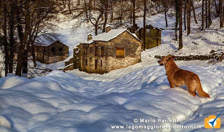 Mulini di Piero con neve. Vallate dell'alto Luinese, sul territorio di #Curiglia con #Monteviasco