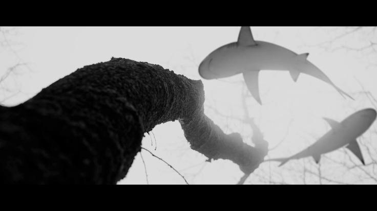 directed by Turgut Akaçık Halil Sezai - Garip