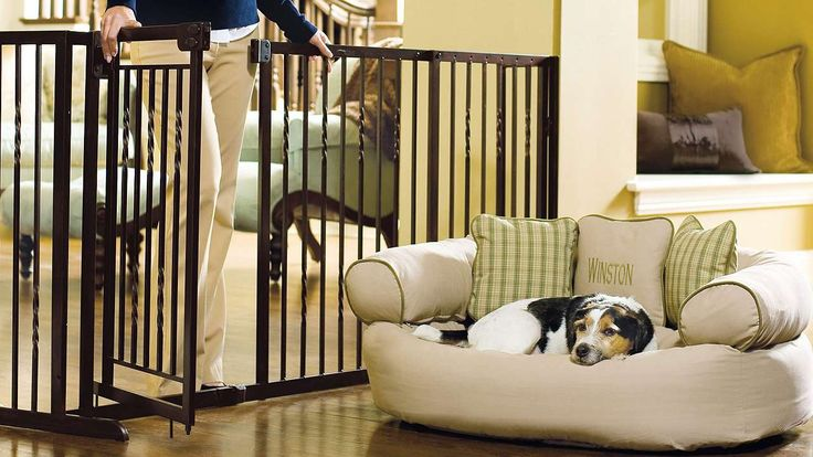 1000 Ideas About Pet Barrier On Pinterest Dog Barrier