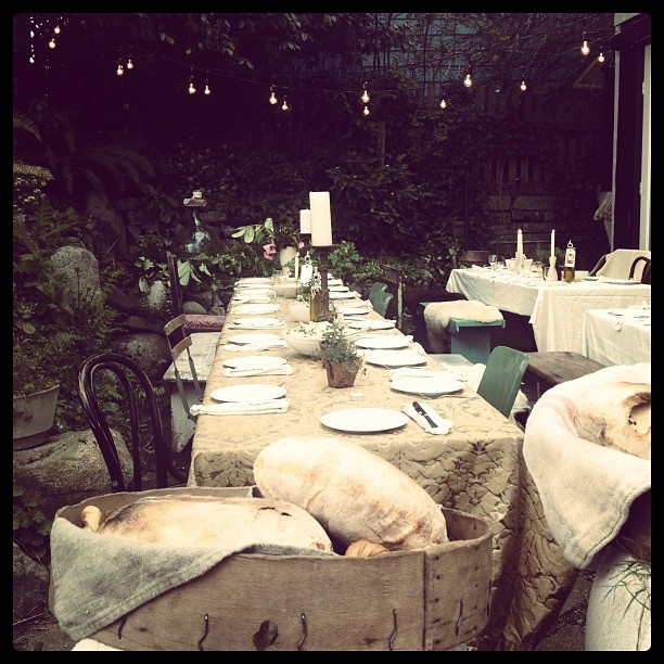 Outdoor dining. Pale brocade tablecloths add substance and structure.