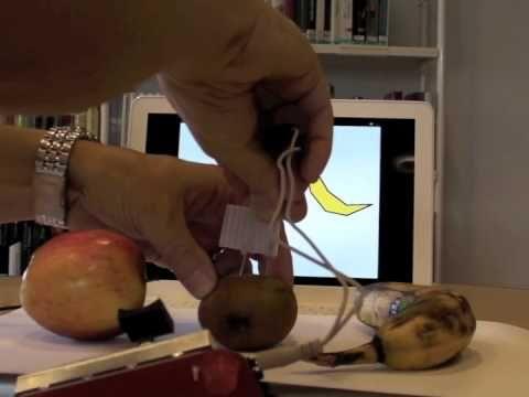 Scratch Picoboard Fruchtmessgerät