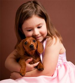 Dachshund Training: Learn All About Training Dachshunds & Taking Care of Them