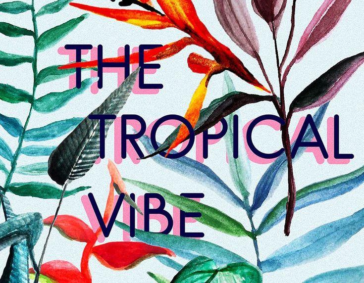 Бесплатная графика: тропические иллюстрации и паттерны – Meelo