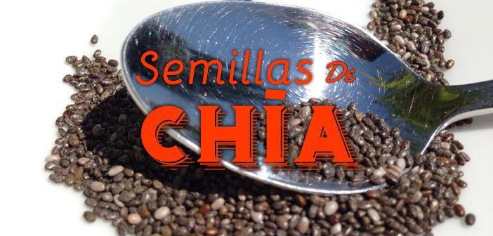 11 beneficios de la semilla de chía para bajar de peso  http://nutricionysaludyg.com/nutricion/semilla-de-chia-bajar-peso/