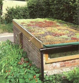 Maddy Harland describes how to convert a pitch and tar flat roof into a green roof: a beautiful and enduring paradise for birds and bees