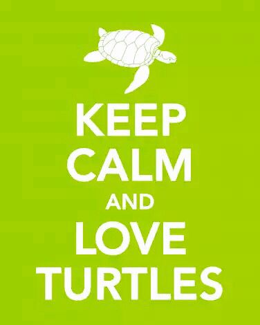 Keep Clan and Love Turtles