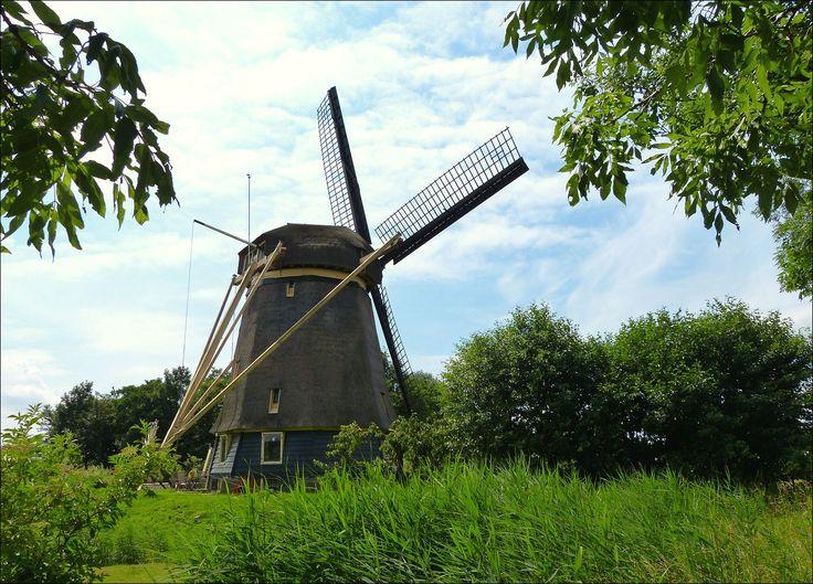 Windmill along the river Amstel, near Amsterdam