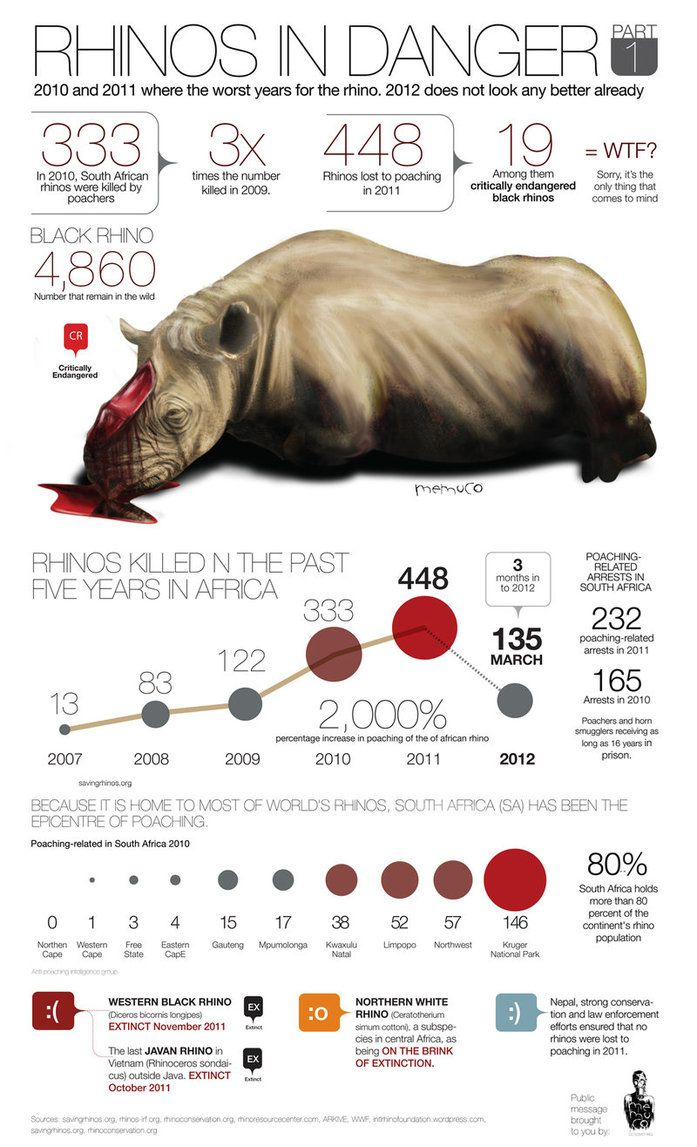 RHINO POACHING by *memuco on deviantART