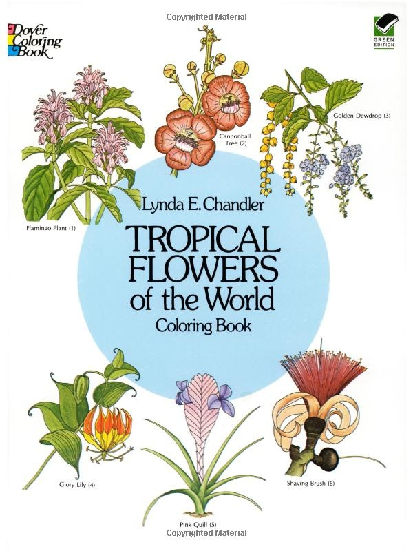 Tropical Flowers Of The World Coloring Book Dover Nature Lynda E