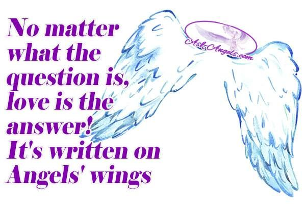 No matter what the question is, love is the answer! It's written on Angels' wings...  #angels #angelswings #protection #defender #poweroflove #guardianangel #angelicmessage #divinelove