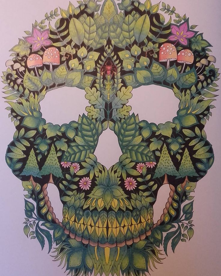 Skull Enchanted Forest Adult ColoringColoring BooksColouringJohanna
