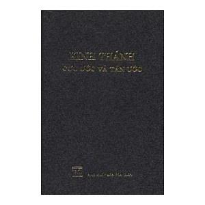 Vietnamese Bible Cadmen Version