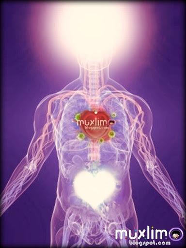 Islamic Holy Spirit   Muxlimo's Lair