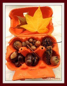 La scatola dei tesori dell'autunno