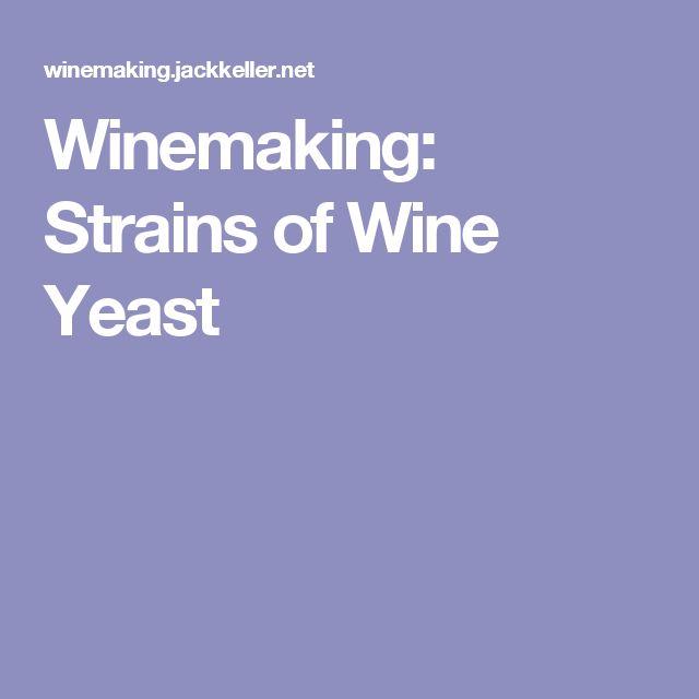 Winemaking: Strains of Wine Yeast