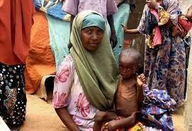 Lorsqu'il apparaît dans l'espace médiatique, le terme de somalien n'est généralement qu'un simple qualificatif. L'imaginaire collectif qui s'est construit en France depuis les années 70 autour de la Somalie l'associe aux famines, à la guerre civile et...