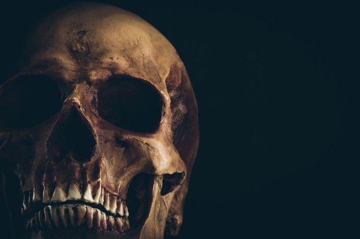 Robert Lanza, vědec zlékařské fakulty na severokarolínské univerzitě, se včerstvém vydání Aeonu rozhodl pro nelehký úkol: vysvětlit čtenářům, že poté, co zemřou, stane se něco úplně jiného, než s…