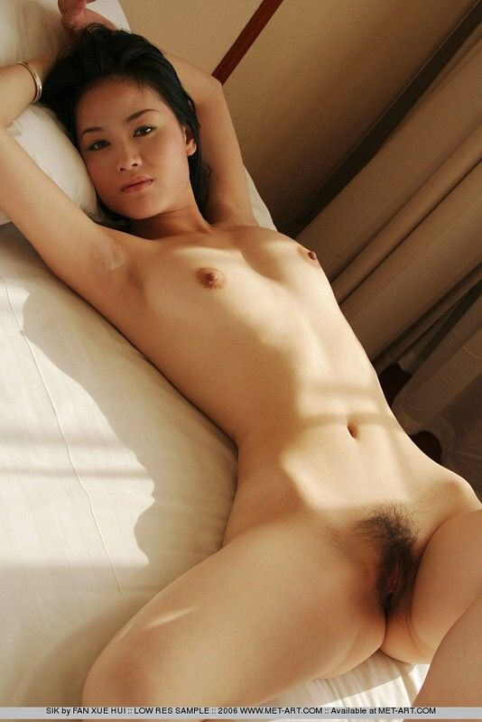 Asian girls hairy pussy final