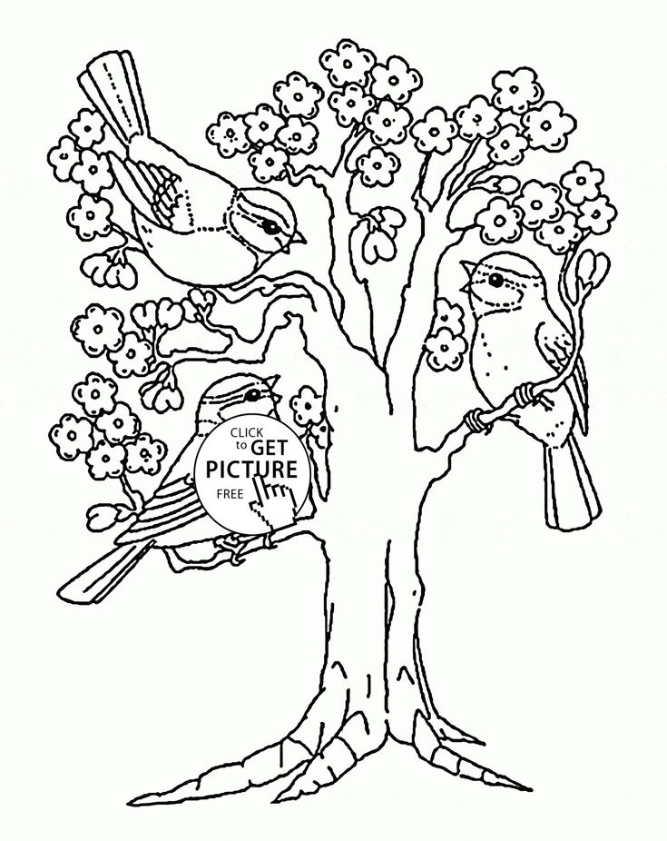 Spring Blooming Tree coloring page for kids, seasons