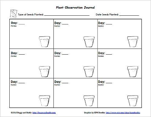 preschool plant journals template | Plant Journal ...