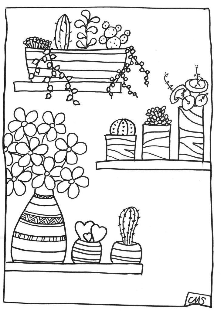 coloriages: les succulentes