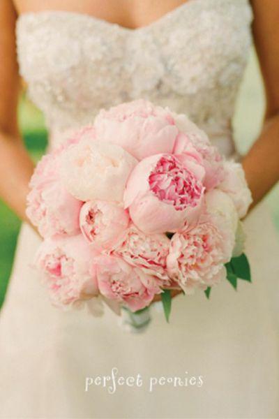 Bouquet de mariee pivoines roses pales, rose poudrees