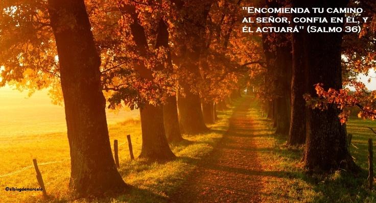 EL BLOG DE MARCELO: ¡Regalo!: 20 paisajes de otoño, 20 frases de los salmos
