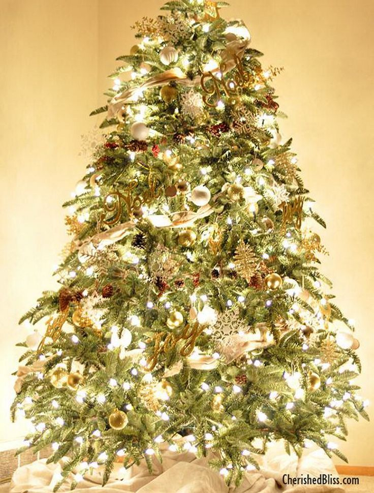 A vision of rugged alpine charm, our Mt. Shasta Fir Christmas tree embodies the splendor of Northern California's evergreens while delivering maximum functionality and efficiency. Its EASY PLUG™️ setup eliminates the need to connect light strings manually — simply assemble the tree sections and plug into a wall socket for a brilliant display.