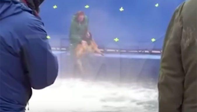 Pirates des Caraïbes, Harry Potter, et tout récemment Mes vies de chien : selon plusieurs enquêtes des associations de protection animale outre-Atlantique, les animaux utilisés pour le tournage de ces films à succès auraient été maltraités.
