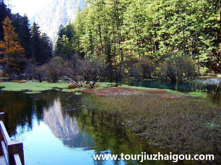 Beautiful Panda Lake
