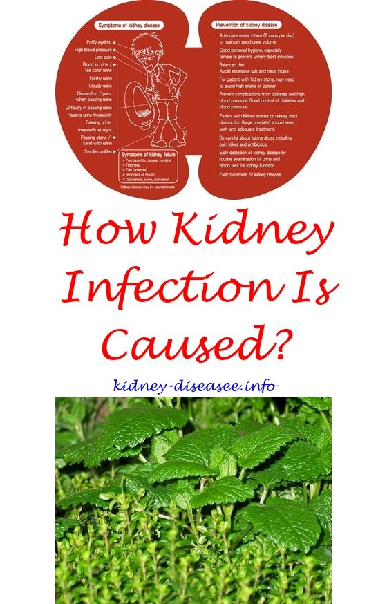 kidney infection swelling abdomen - does drinking water help kidney function.kidney infection gallstones 1077493192