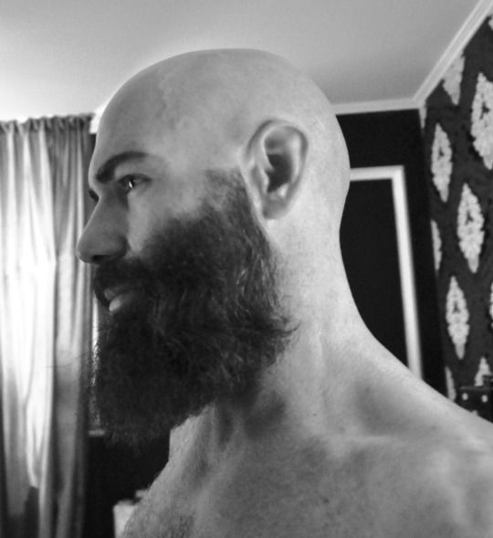 m s de 25 ideas incre bles sobre hombres calvos con barba en pinterest estilos de cabello y. Black Bedroom Furniture Sets. Home Design Ideas