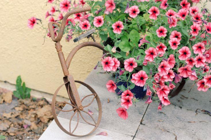 P.S. Never Stop Smiling: Summer garden