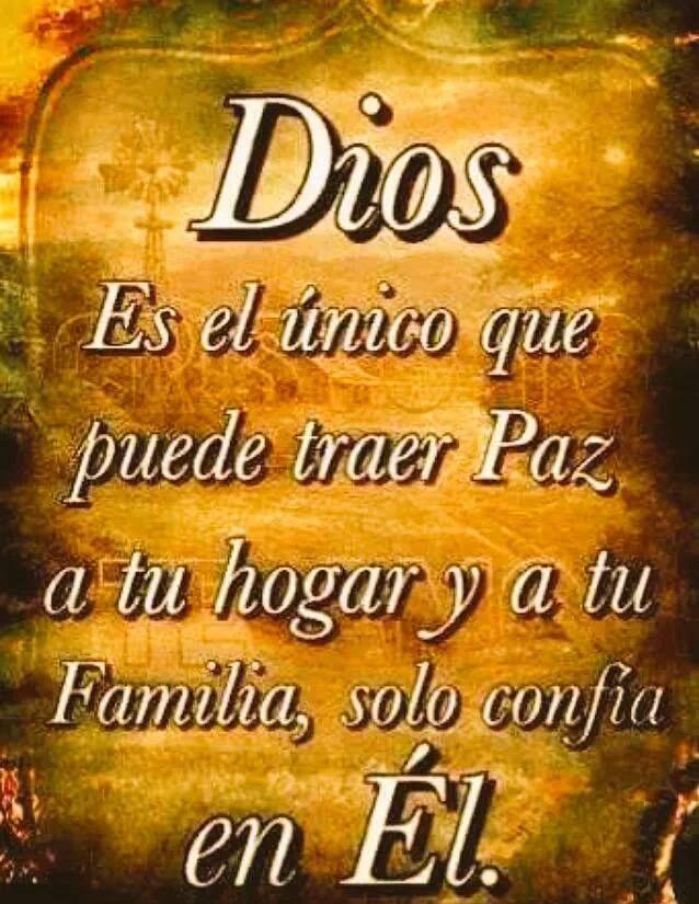 Dios es el único que puede traer Paz a tu hogar y a tu familia, solo confía en El.