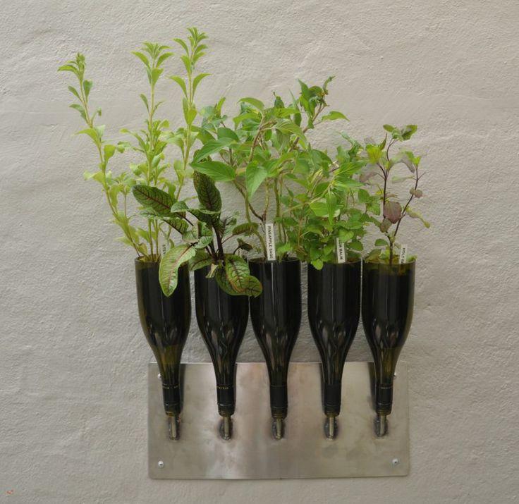 Upcycled wine bottles make a graceful vertical herb garden.